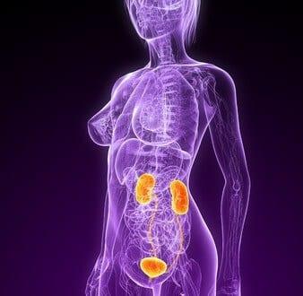 Blasenentzündung – Was hilft bei Harnwegsinfekten?