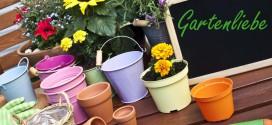 Pro & Kontra – künstliche Pflanzen vs. echte Pflanzen