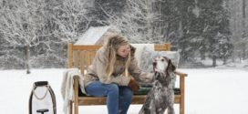 Den Garten winterfest machen: Ratgeber und Checkliste
