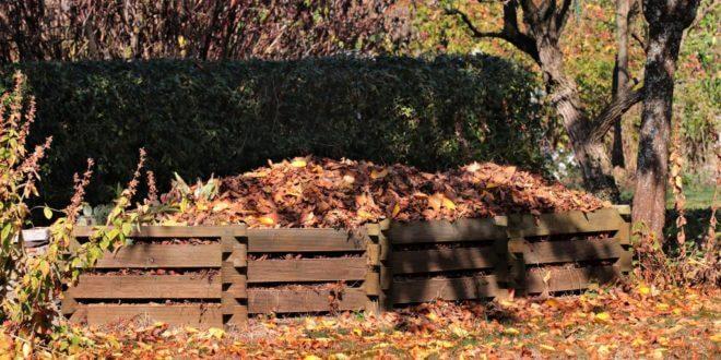 Kompostierung im eigenen Garten – was ist zu beachten