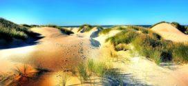 Dänemark: Traumhaft schön und nah gelegen