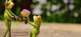 Tipps für einen perfekten Heiratsantrag