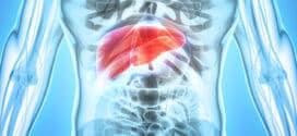 Leber entgiften – richtige Hausmittel zur effektiven Entgiftung