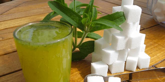 Stevia vs. Zucker – Ist Stevia wirklich eine Alternative?