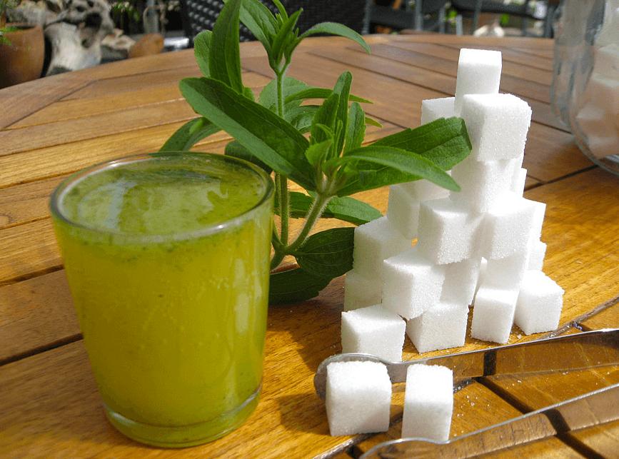 stevia vs zucker ist stevia wirklich eine alternative. Black Bedroom Furniture Sets. Home Design Ideas
