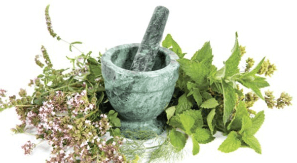 Kräuteröle, Tinkturen und Salben selbst herstellen