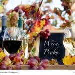 Genuss in der Pfalz: Weinprobe im Herbst, Rotwein, Weiwein, Trauben :)